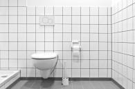 Carrelage toilettes.